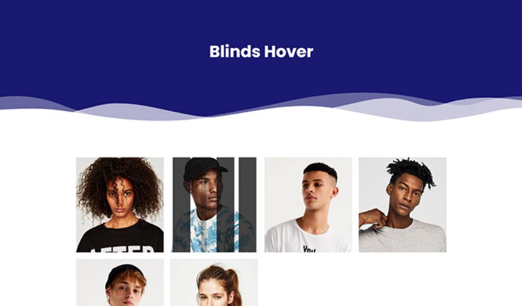 Blinds Hover