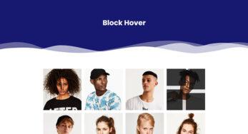 Block Hover