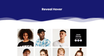 Reveal Hover